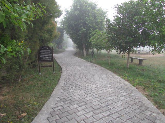 Morning walks at Aahana