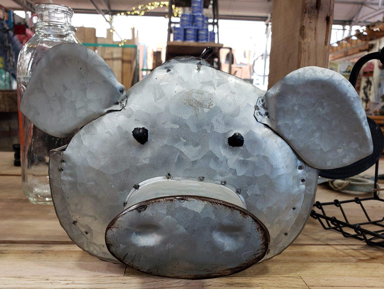 Pig Head Containter