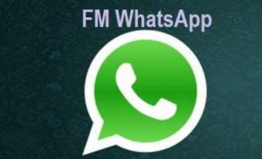 FMWhatsapp APK Download Latest Version 2019 for Android | APK File