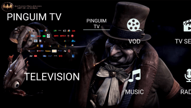 Pinguim TV New Version No need Activation 7