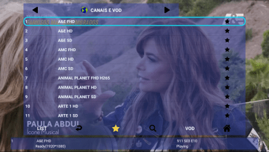 Smart Leleo TV Premium IPTV APK With Included Activation 3