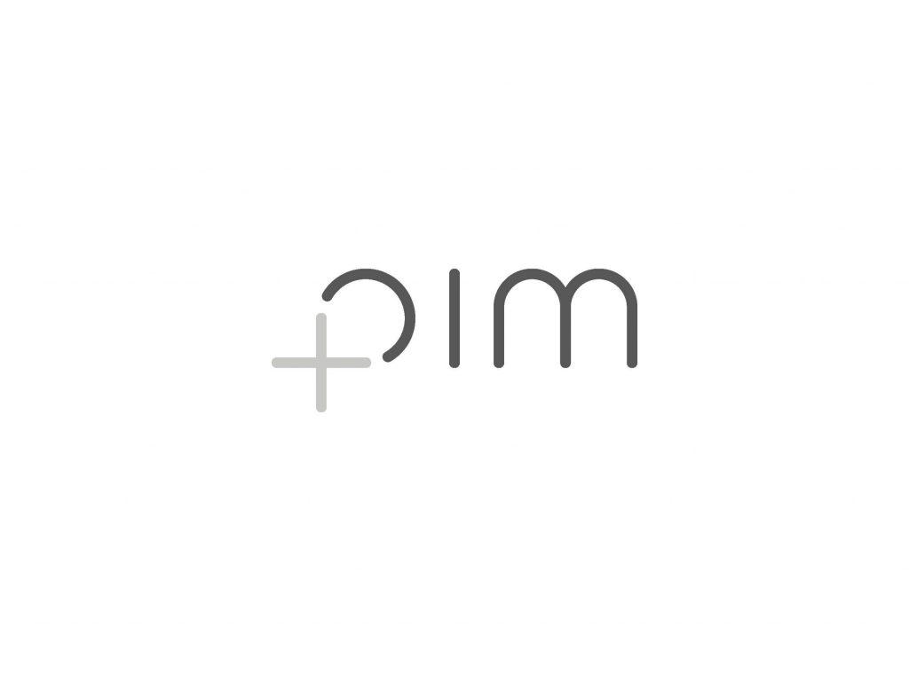 logo pim plus variant 1 Pagina 04 scaled