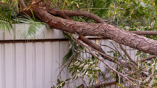 What To Do After Fence Storm Damage