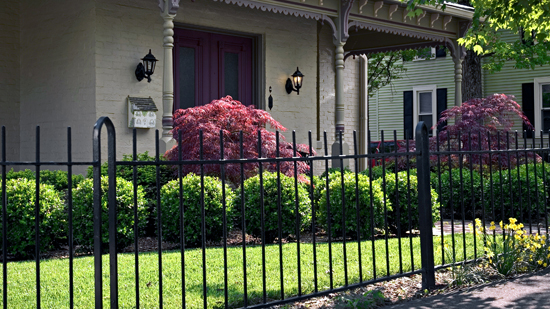 Wrought-iron Fences