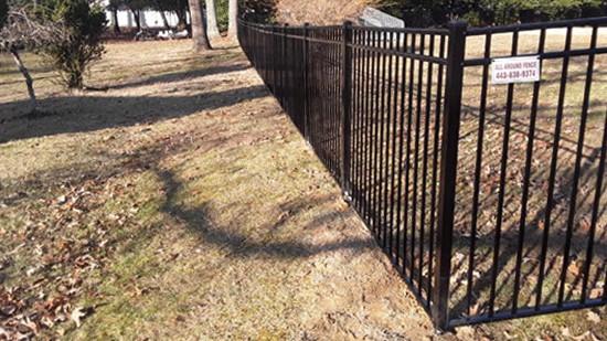 Black Fences