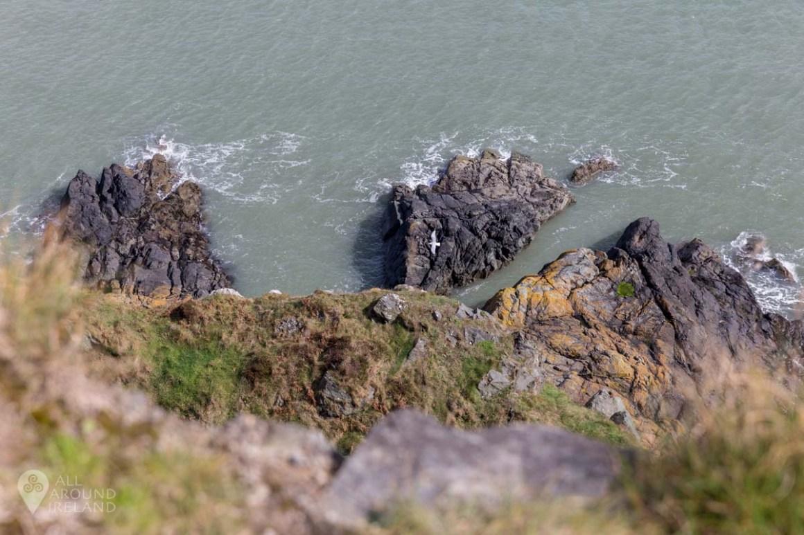 Stunning coastal scenery along the Bray to Greystones cliff walk