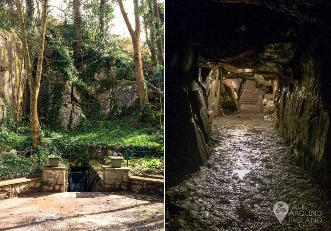 The entrance to Mitchelstown Cave from outside and just inside.