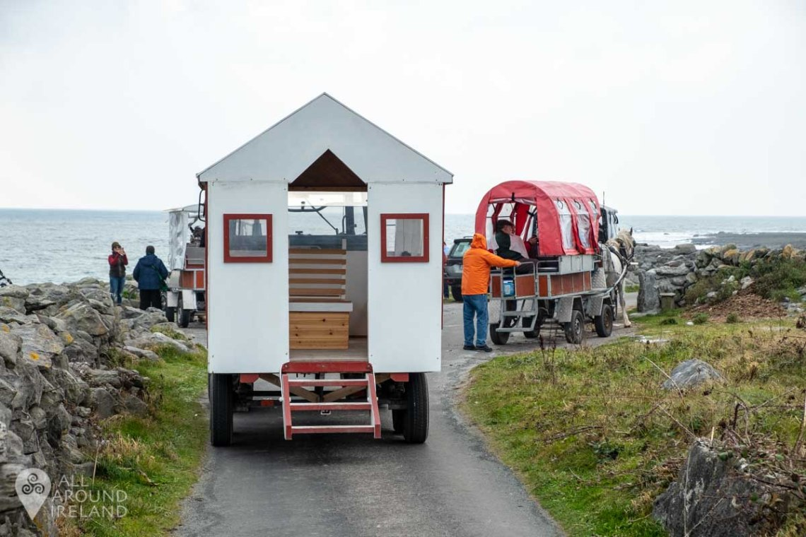 Some of the tour options available on Inis Oirr