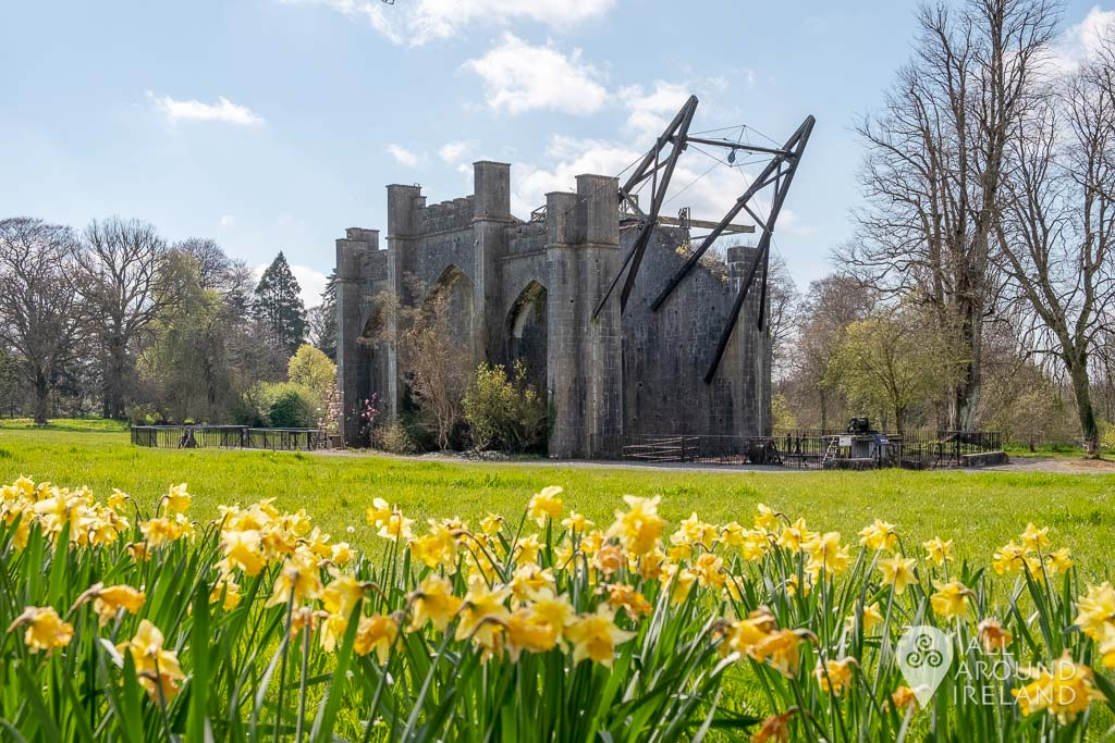 The Great Telescope photographed from a distance with daffodils in the foreground.