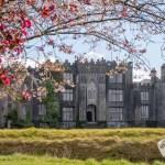Birr Castle Gardens – a springtime delight