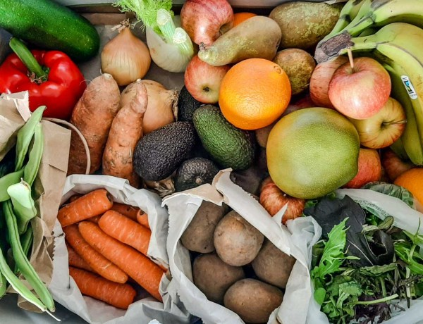 Green Earth Organics Review - fruit and veg delivery