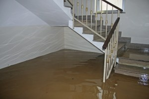 Should I Waterproof My Basement?