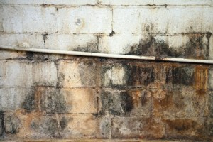 musty basement smell all aspects waterproofing