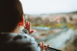 4 Signs of Leaky Window Wells all aspects waterproofing
