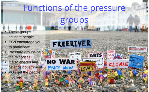 Pressure Groups and What Role it Play in the UK ...