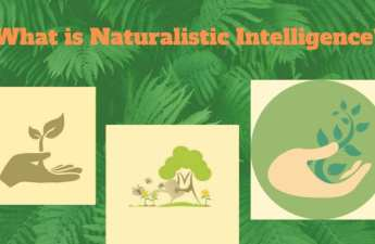 Naturalistic-intelligence