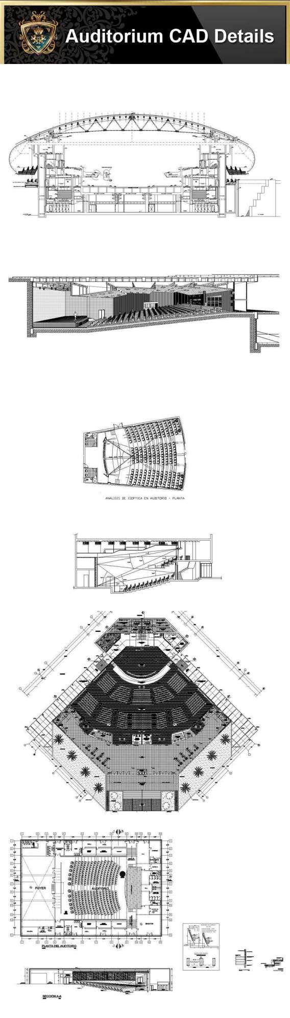 Auditorium Design,Autocad Blocks,AuditoriumDetails,Auditorium Section,Auditorium elevation design drawings