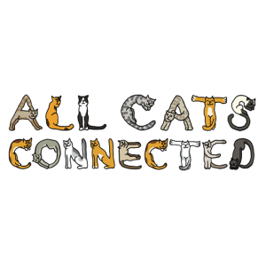 All Cats Connected