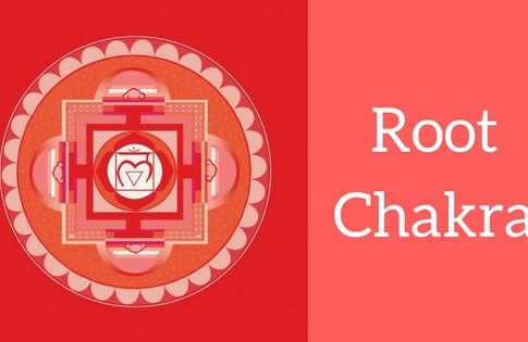 Introduction of 1st Chakra in Our Body (Root Chakra)