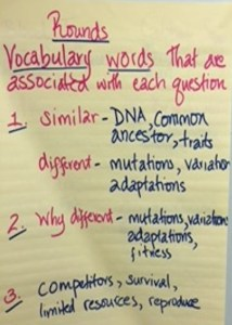 Pre-Group Learning Vocabulary Chart