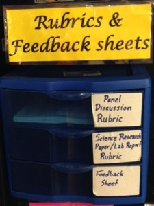 Plastic Trays Feedback and Rubrics