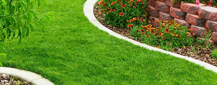 bordure de jardin ducos allee de