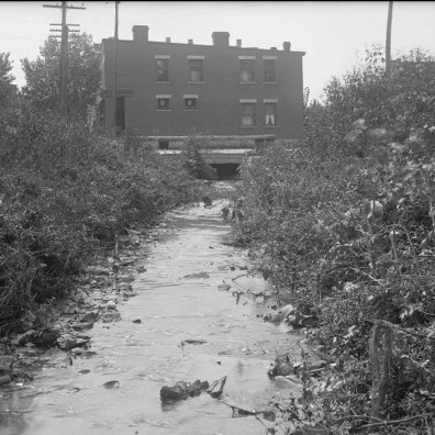 The opening of the culvert at Hamilton Avenue