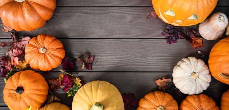 Cosa Fare Ad Halloween I Parchi Esteri 2019 Allemandich