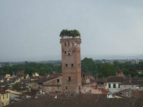 treetower