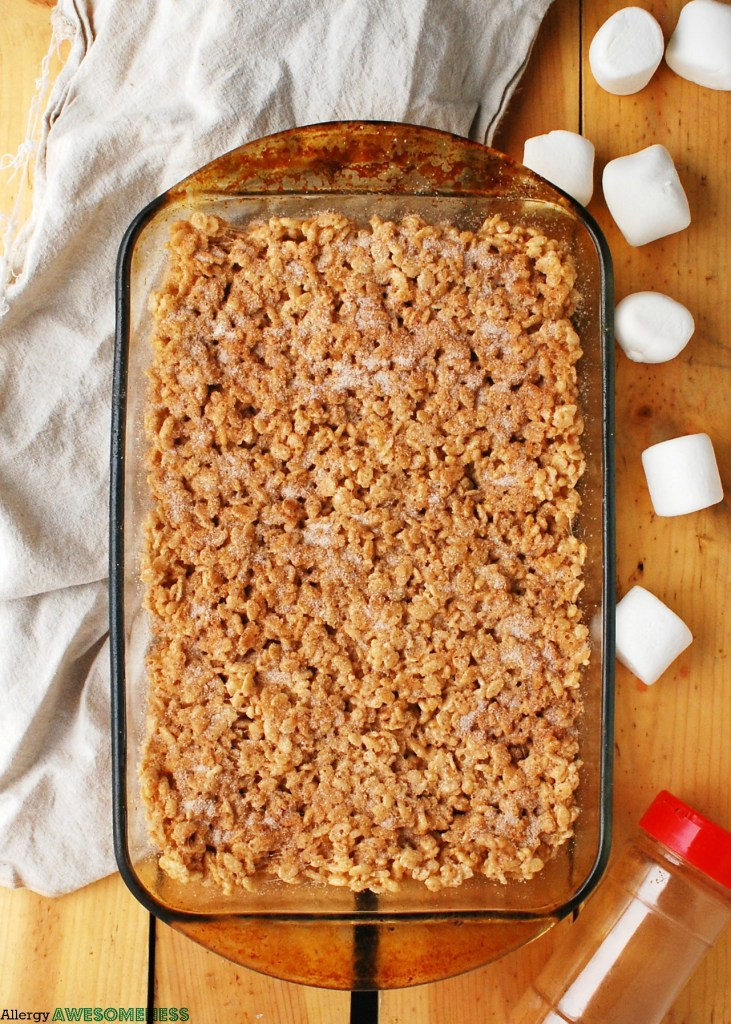 Dairy-free Snickerdoodle Rice Krispie Treats Recipe by Allergy Awesomeness