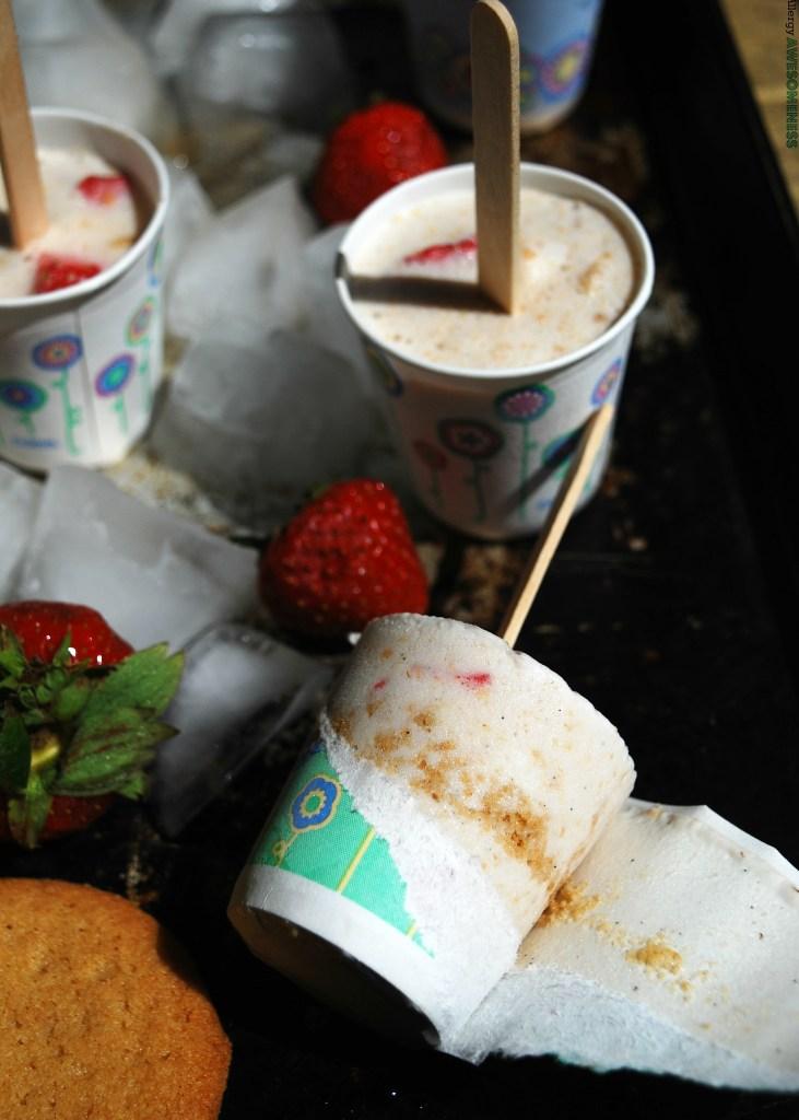 Homemade Ice Cream Using DIxie Cups No Molds Needed