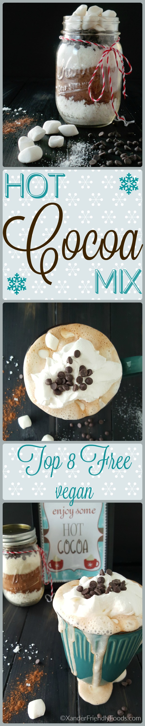 Deliciously dairy-free Hot Cocoa mix, perfect for 1 mug or 10. Top 8 free & vegan