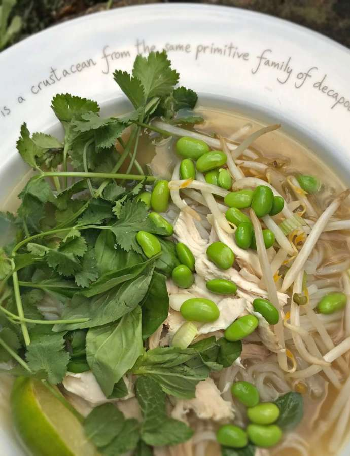Rice Noodle Soup – Dairy Free