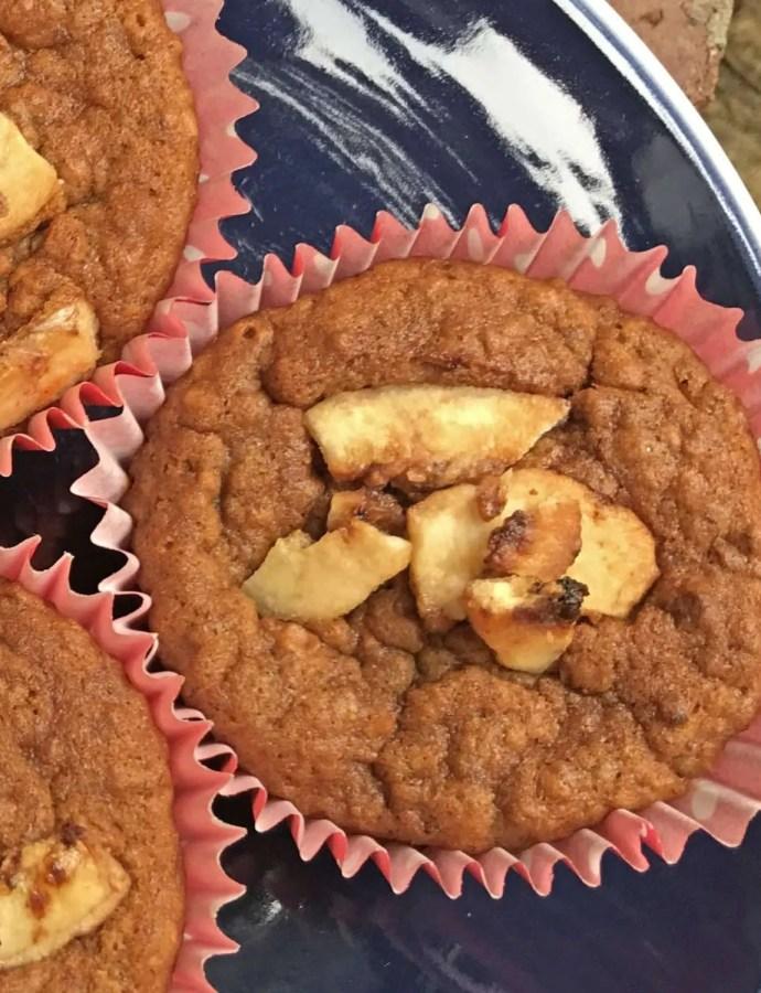 Vegan Oat Banana Muffins