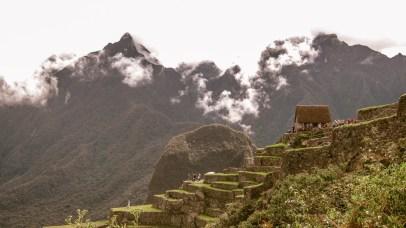 Machu Picchu Terrasse