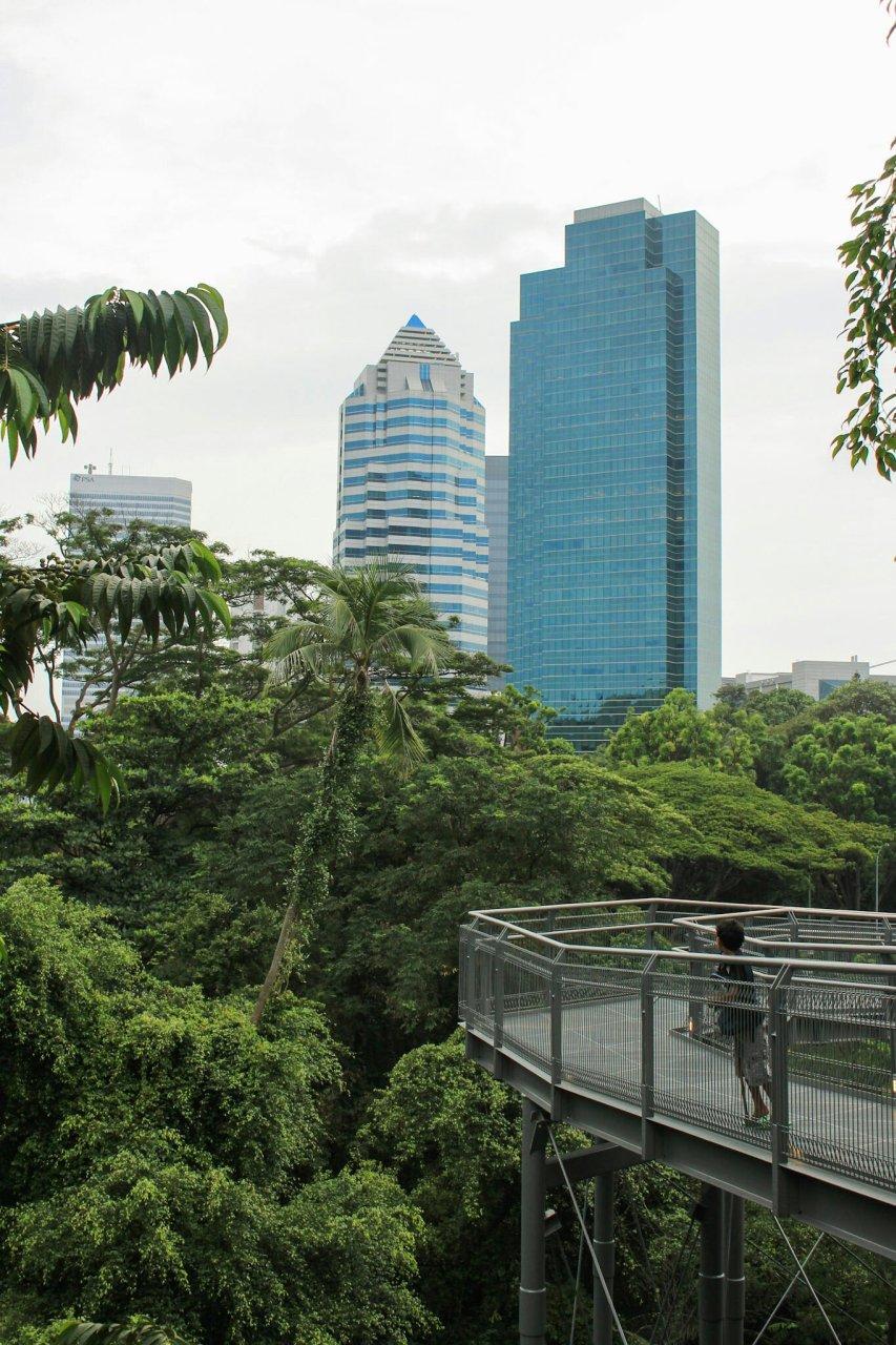 Die Southern Ridges in Singapur