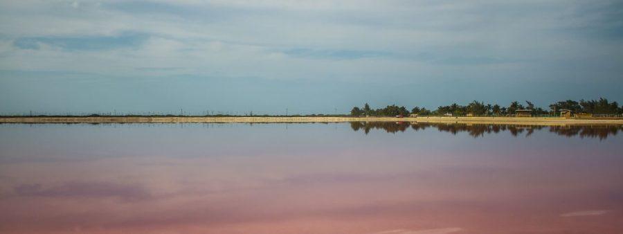 Pinke Lagune von Las Coloradas