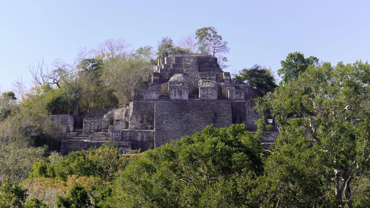 Calakmul: Das Königreich der Schlange