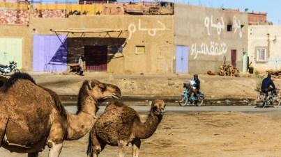 Die Wüste Sahara in Merzouga, Marokko