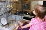 Kira mit den neuen Vögeln
