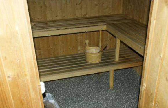 homo sauna
