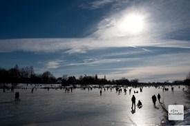 Aasee-zugefroren-9031