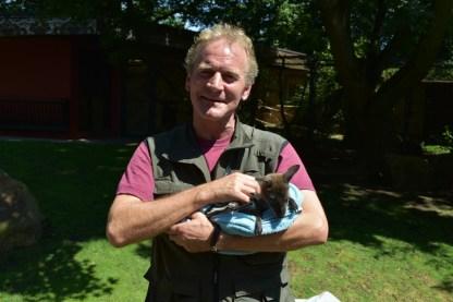 Das Känguru-Baby mit Pfleger Ralf Nacke. (Foto: Allwetterzoo Münster)