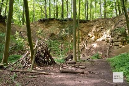 Ehemaliger Steinbruch in den Baumbergen