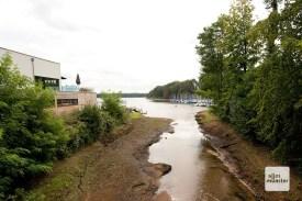 Die Mündung des Mühlenbachs in den Halterner Stausee (Foto: Bührke)