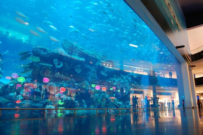 Dubai Mall 2 - TOP 10 ATTRACTIONS AND THINGS TO DO IN DUBAI