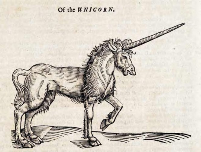 Eenhoorn - TOP 10 MYTHICAL ANIMALS FROM HISTORY
