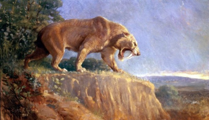Sabeltandtijger - TOP 10 EXCTINCT ANIMALS IN HISTORY | PERISHED ANIMALS SPECIES