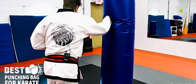 Punching Bag for Karate