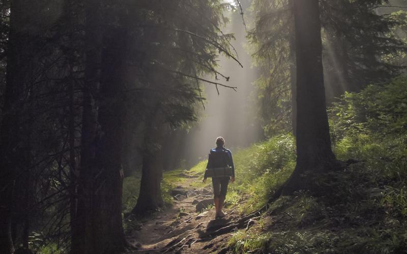Woman walking through magical woods